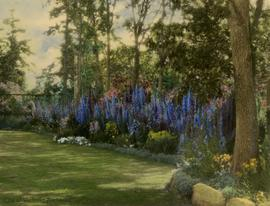 Garden with delphiniums