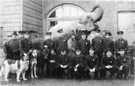 Victoria Fire Department members pose with animals (including dogs, donkey, horse, and elephant)
