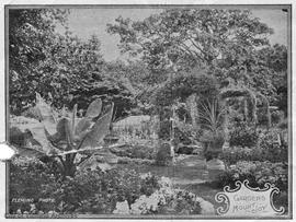 "The gardens at ""Mount Joy"", 601 Foul Bay Road, Frederick B. Pemberton residence"