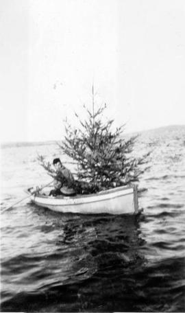 Bringing a Christmas tree from Discovery Island