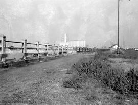 Dallas Road protective fence. Looking west from  Oswego Street