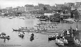 First Nations Canoe races in Inner Harbour