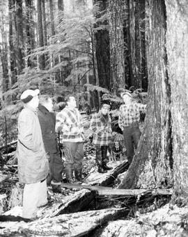 Finding, cutting and transporting tree for world's tallest totem pole