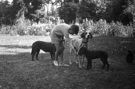 John O'Reilly with dogs