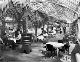 Crystal Gardens, palm room