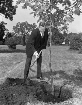 Lieutenant-Governor E.W. Hamber planting tree in Mayor's Grove, Beacon Hill Park
