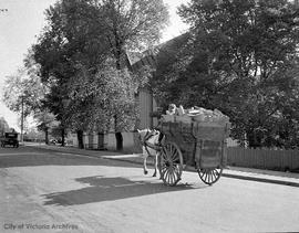 Wood cart and driver on Humboldt Street