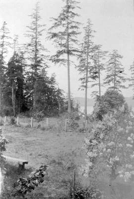 Payne property on Saturna Island