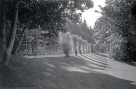 """Hatley Park"", James and Laura Dunsmuir residence, grounds"