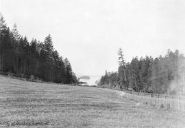 Robert Pim Butchart property (later Butchart Gardens) looking NW towards Tod Inlet