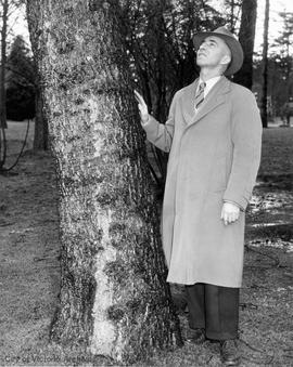 Herb Warren, Parks Administrator by a tree