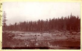 Filter beds at Beaver Lake.  A group of people were taken here on an excursion by the Victoria &a...