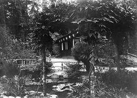 Japanese Tea House in Tea Gardens showing tea house