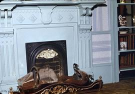 1116 Fort Street, fireplace