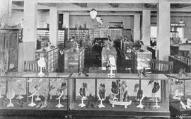 David Spencer Ltd., women's and children's shoe department