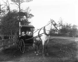 Elizabeth Barnsley with her children Clara and Jack in a horse-drawn buggy