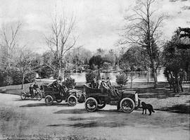 Motoring in Beacon Hill Park