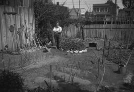 A.P. Cowan in his garden, Fort Street