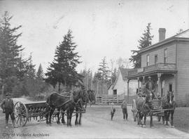 Horse-drawn vehicles outside the Burnside Hotel, 644 Burnside Road