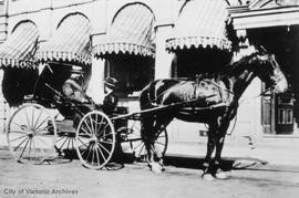 Dr. James D. and Mrs. Ethel Helmcken in their carriage outside 1103 Langley Street